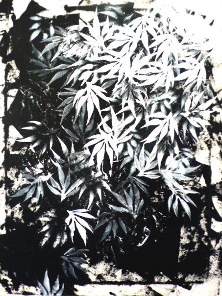 Végétal , acrylique sur toile